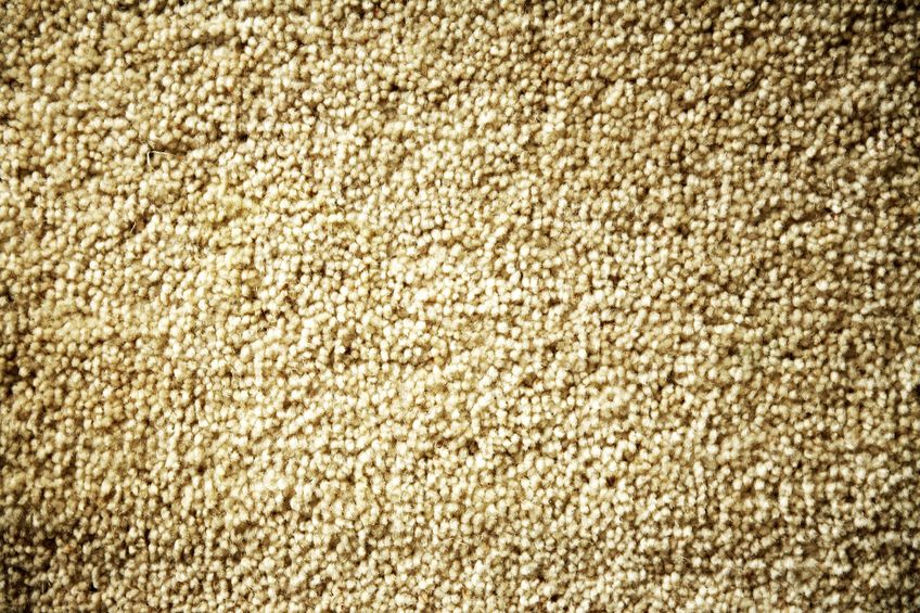 11085463 - closeup of brown color carpet