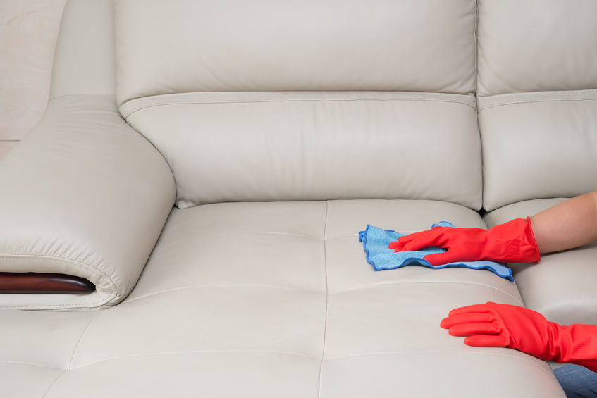 57648078 - cleaning leather sofa at home